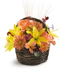 Sensational Splendor Basket from Olney's Flowers of Rome in Rome, NY